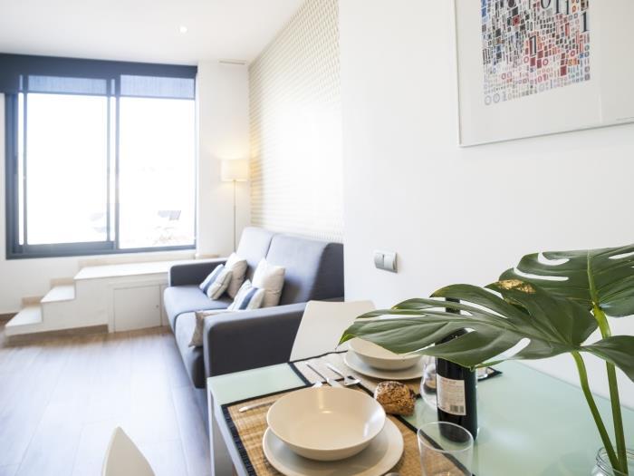 Multiple Apartments In Barcelona Mozart 1 Habitación Terraza