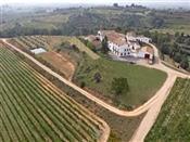 Curs de Viticultura, enologia i tast a la bodega