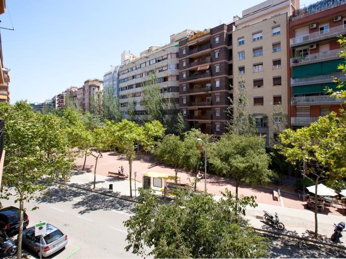 luxury mistral - barcelona