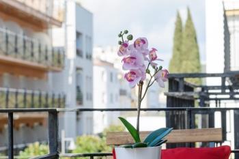 Apartament APARTMENT in the CENTER of TOSSA DE MAR 2