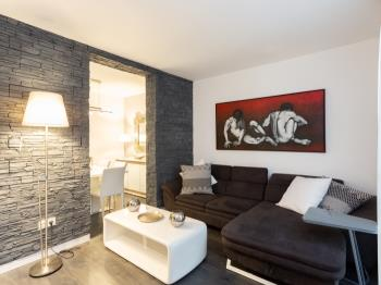 Fuencarral apartment Madrid. One bedroom